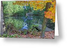 Fall Scene By Pond Greeting Card