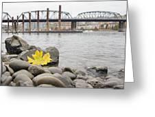 Fall Season Along Portland Willamette River By Marina Greeting Card