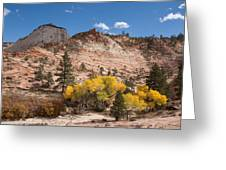 Fall Season At Zion National Park Greeting Card