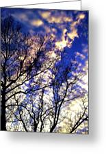 Fall Sky Greeting Card