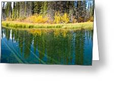 Fall Sky Mirrored On Calm Clear Taiga Wetland Pond Greeting Card