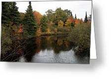 Fall Splendor Greeting Card