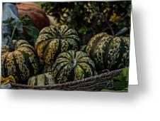 Fall Squash Harvest Greeting Card