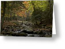 Fall Stream Cades Cove Gsmnp Greeting Card by Paul Herrmann