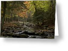 Fall Stream Cades Cove Gsmnp Greeting Card