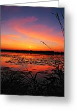 Fall Sunset In The Mead Wildlife Area Greeting Card