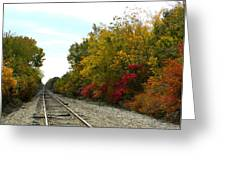 Fall Tracks Greeting Card