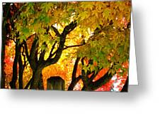 Fall Trees On A Country Road 3 Greeting Card