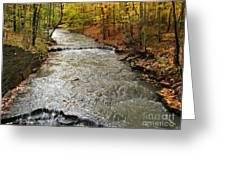 Fall Waters Greeting Card