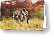 Fall Zebra Greeting Card