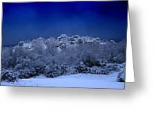Fallen Angel Of Winter Greeting Card