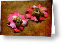 Fallen Blossoms Greeting Card