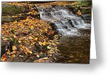 Fallen Leaves At A Waterfall Greeting Card