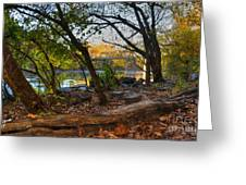 Fallen Log On River Path Greeting Card