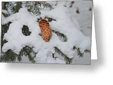 Fallen Pine Cone Greeting Card
