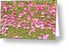 Fallen Rhododendron Greeting Card