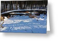 Fallen Tree Deertrails In Winter Greeting Card