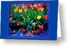 Fallen Tulips Greeting Card