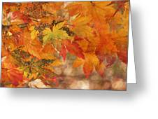 Falling Colors I Greeting Card