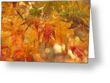Falling Colors II Greeting Card