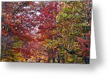 Falling For West Virginia Greeting Card