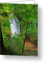 Falling Foss Waterfall In North York Moors National Park Greeting Card