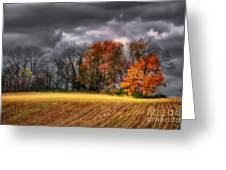Falling Into Winter Greeting Card