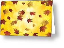 Falling Maple Leaves In Autumn Illustration Greeting Card