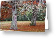 Falling Of The Leaves  Greeting Card