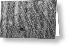 Falling Rain 01 Greeting Card
