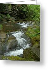 Falling Water At Falling Water Greeting Card
