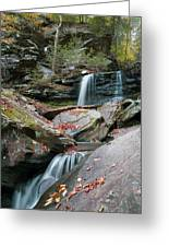 Falling Water Meets Fallen Leaves Greeting Card