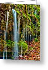 Falls And Moss Greeting Card