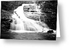Falls Branch Falls Greeting Card by Valeria Donaldson