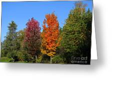 Falls Colours Greeting Card