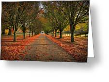 Fall's Driveway Greeting Card