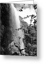 Falls Of Eden Greeting Card