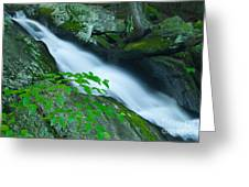 Falls Of Plymouth Greeting Card