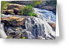 Falls Of Reedy River Greeting Card