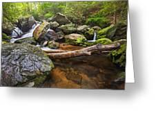 Falls On Blood Mountain Creek Greeting Card