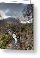 Falls On The River Coupall Greeting Card