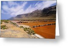 Famara Cliffs And Salinas Del Rio On Lanzarote Greeting Card