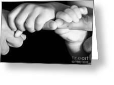 Family Hands  Greeting Card by Ofer Zilberstein