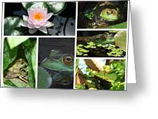 Family Of Frogs Collage Greeting Card