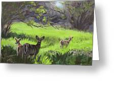 Family Outing Greeting Card