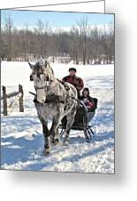 Family Sleigh Ride Greeting Card