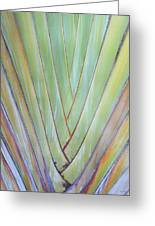 Fan Palm Abstract 2 Greeting Card