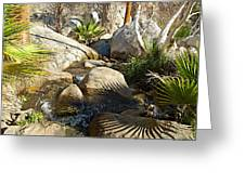 Fan Palm Leaves And Shadows Over Andreas Creek Rocks In Indian Canyons-ca Greeting Card