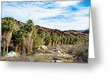 Fan Palms Line The Creek In Andreas Canyon In Indian Canyons-ca Greeting Card