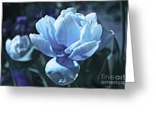 Fantastic Flowers  Greeting Card